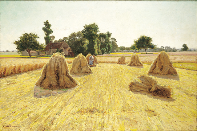 "Edwin Evans ""Grain Fields"""
