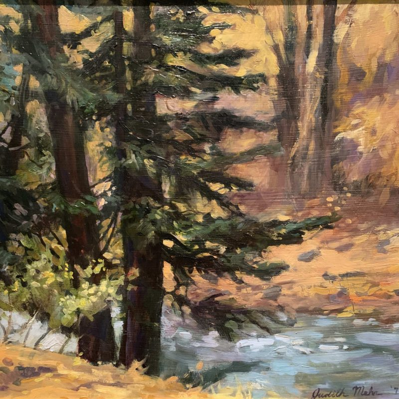 Judith Mehr, Fall Forest